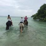 Santo Horse Adventures, Vanuatu