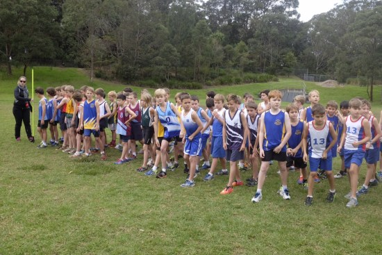Ready for the start