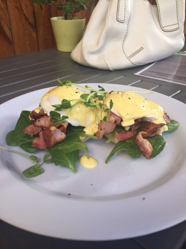 Eggs Benedict with bacon: $17.00