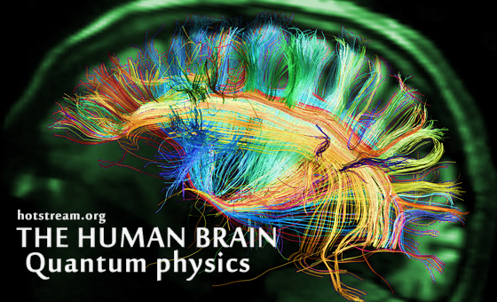 Human Brain-Quantum physics