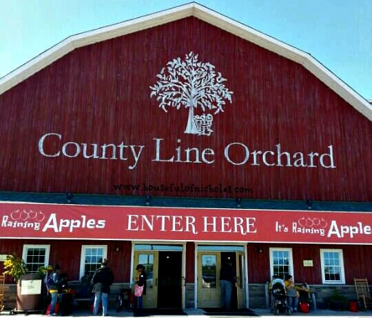 County Line Apple Orchard