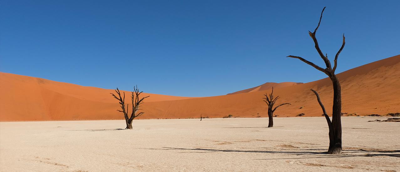 1440x550_Namibia