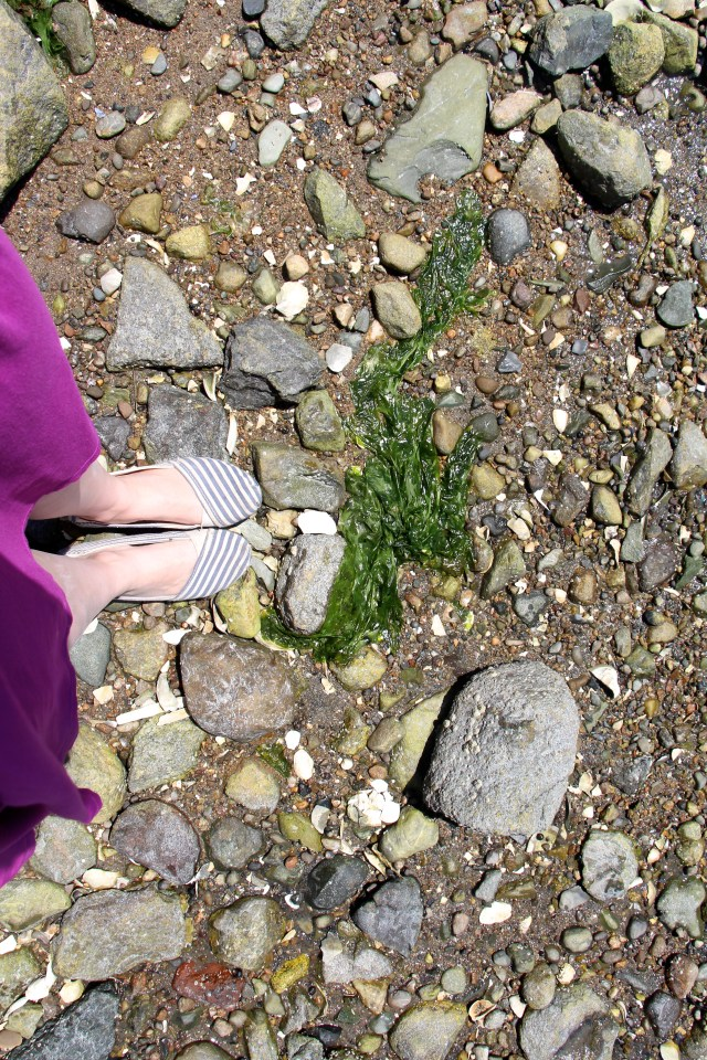 shoes on the rocky shore