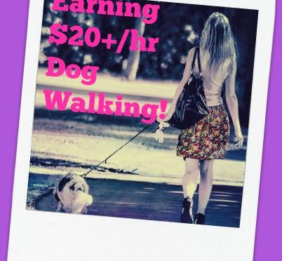 Earn 20 an hour dog walking