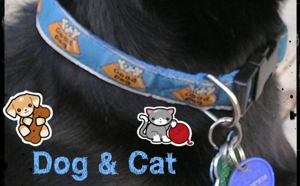 Method 18: Crafting & Selling Custom Dog, Cat, & Pocket Pet Collars & Harnesses