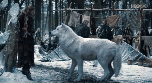 http://i1.wp.com/howlingforjustice.files.wordpress.com/2012/06/ghost-dire-wolf-game-of-thrones.png?fit=1000%2C1000