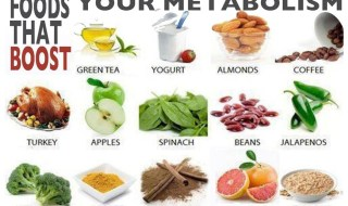 metabolic-cooking-foods-to-speed-up-metabolism