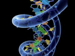 Our DNA Can Be Reprogrammed By Words And Certain Frequencies