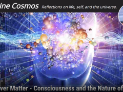 Consciousness And The Nature Of Reality