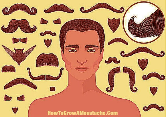 How To Grow A Mustache – Tips From A Lady With Mustache Envy