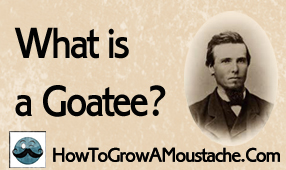 What is a Goatee?