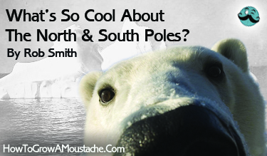 What's So Cool About The North & South Poles?