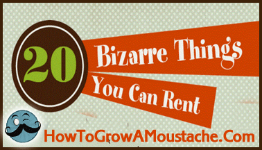 Bizarre Things You Can Rent (Infographic)
