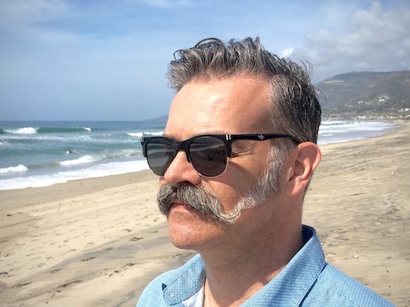 Fello Pondering on the Beach