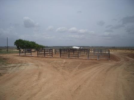 Obras en el recinto ganadero.