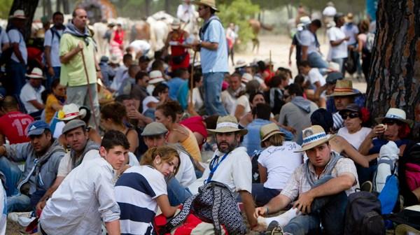 Peregrinos de la Hermandad de Huelva. (Foto: Julián Pérez)