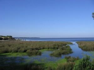 Parque Nacional de Doñana.