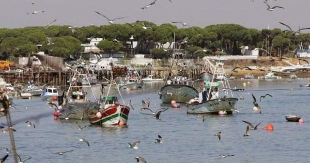 Puerto de Punta Umbría.
