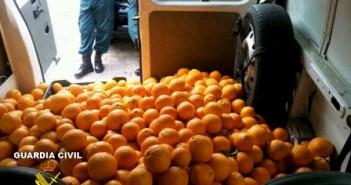 Naranjas aprehendidas por la Guardia Civil.