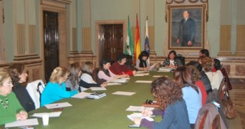 Consejo Local de la Mujer.