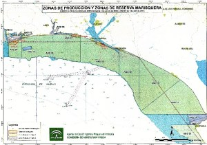 Mapa sectorial.
