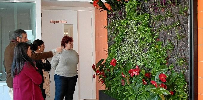 Inauguración de los jardines verticales en Calañas.
