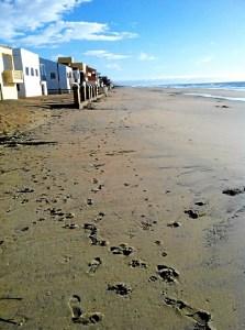 Playa de La Antilla.