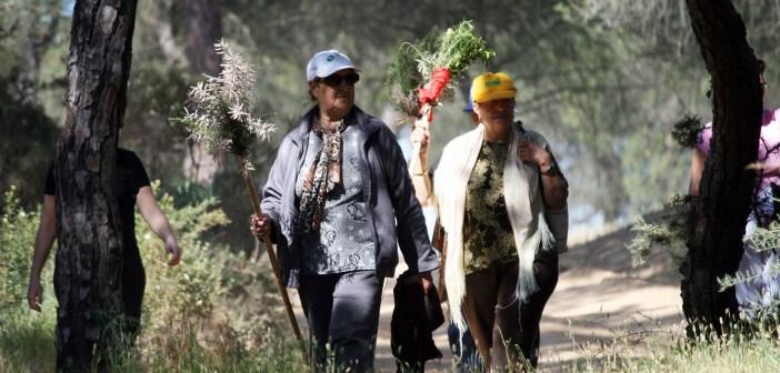 Senderismo por Cartaya dentro del programa 'Deporte y Naturaleza'
