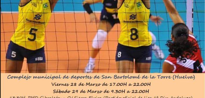 Cartel del Torneo de voleibol en San Bartolomé de la Torre.