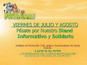 STAND DE JULIO Y AGOSTO 2014