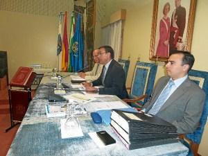 pleno diputacion junio 2014-43