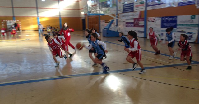 Concentración de baloncesto mini en La Palma del Condado.
