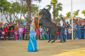Feria Gamba Punta 2015 (3)