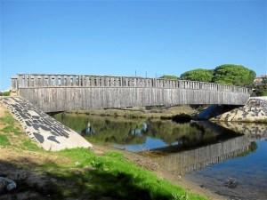 lipieza arroyos y playa en cartaya-460