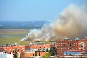 Incendio Marisma (3)