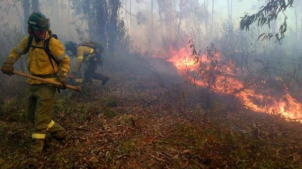 Incendio Zalamea