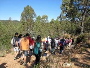 senderismo ituci verde por la sierra de tejada en la provincia de Huelva (2)