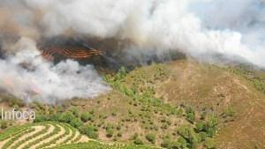 incendio nerva 8 de agosto (2)