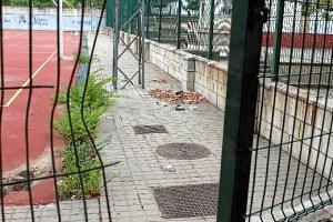 pp pistas deportivas (8)