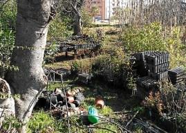 Nuevo acto vandálico en el Parque Moret, esta vez contra un vivero