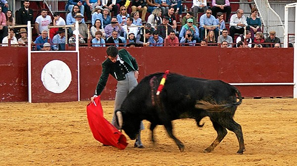 Festival Taurino en Villalba del Alcor (9)