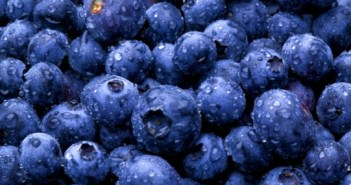 blueberries_541x360