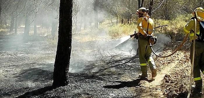 Imagen de archivo de bomberos del Plan Infoca durante una intervención. (Plan Infoca)