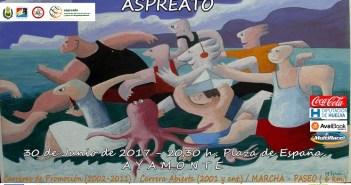 Cartel de la Carrera Nocturna solidaria de Aspreato.