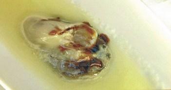 ostras con vinagreta