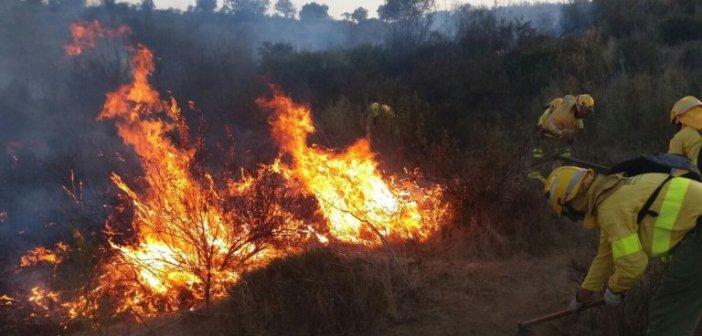 Incendio en Niebla (1)