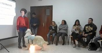 terapia asistida animales