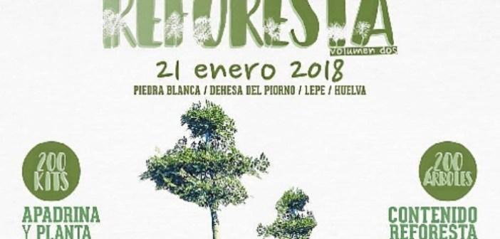 Reforesta Volumen 2