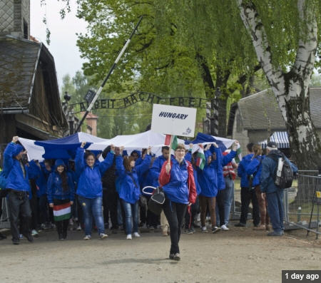 The Hungarian group in Auschwitz-Birkenau