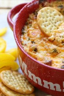 Fresh Spinach and Chorizo Dip   |   @hungryfoodlove